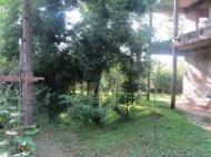 Дом в Махинджаури с большим участком. Для дачи или гостиницы. Фото 3