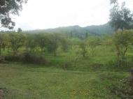 Земельный участок на трассе в Гонио Фото 2