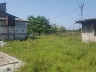 Земельный участок в Батуми. Грузия. Фото 6