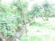 Участок у реки в Батуми, Грузия. Фото 4