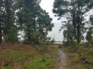 Участок у моря в Махинджаури, Грузия. Продам участок в Махинджаури с видом на море и город. Фото 1
