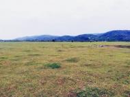 Земельный участок на продажу в Самтредиа, Грузия. Фото 5