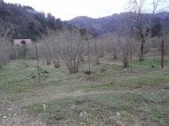 Земельный участок в Гонио, Грузия. Фото 5