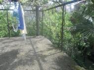 Земельный участок с домом в Батуми Фото 4