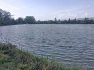 Участок с озером в пригороде Тбилиси. Купить участок с озером в пригороде Тбилиси, Грузия. Фото 2