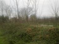 იყიდება მიწის ნაკვეთი ბათუმში.. ფოტო 2