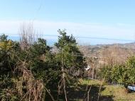 Дом с мандариновым садом в Капрешуми. Частный дом с видом на море и город в Капрешуми, Батуми, Грузия. Фото 3