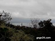 Земельный участок у моря в Махинджаури, Грузия. Фото 2