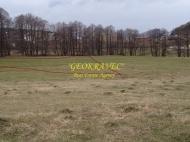 Участок в центре Бакуриани. Купить земельный участок на горнолыжном курорте Бакуриани, Грузия. Фото 5