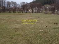 Участок в центре Бакуриани. Купить земельный участок на горнолыжном курорте Бакуриани, Грузия. Фото 7
