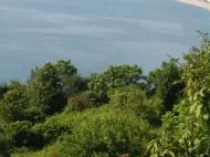 Участок с видом на море в Квариати. Купить участок с видом на море в Грузии. Фото 4