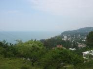 земельный участок в Махинджаури Фото 2