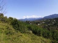 Купить частный дом в курортном районе Кобулети, Грузия. Мандариновый сад, Фруктовый сад. Фото 11
