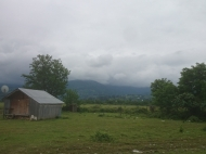 Участок в Хелвачаури,Аджария,Грузия. Фото 1