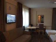 Квартира с видом на горы в Бакуриани. Купить квартиру с ремонтом и мебелью в горах Бакуриани, Грузия. Фото 2