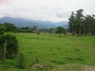 Купить земельный участок в пригороде Батуми,Хелвачаури,Грузия. Фото 2