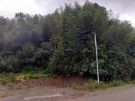 Земельный участок с видом на море в Цихисдзири. Купить земельный участок в Грузии. Фото 10