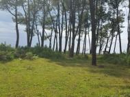 Земельный участок у Черного моря в Уреки. Участок на берегу реки в Уреки, Грузия. Фото 4