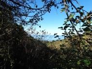 Земельный участок в Махинджаури с видом на море и на горы. Фото 1