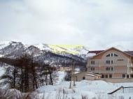 Участок в центре Бакуриани. Купить участок с видом на горы в Бакуриани,Грузия. Фото 6