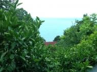 Земельный участок в курортной зоне Квариати. Аджария Грузия Фото 2