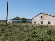 Участок с фермой в Кутаиси, Грузия. Фото 1