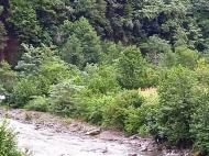 Продается земельный участок в живописном месте. Аджария, Грузия. Фото 2