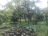 Земельный участок в Батуми. На участке есть хозпостройки. Фото 3