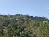 Аренда дома с видом на море и горы в тихом районе. Махинджаури, Аджария, Грузия. Фото 2