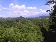 Земельный участок в Ланчхути. Купить земельный участок в Грузии. Фото 5
