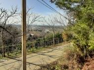 Купить частный дом в курортном районе Кобулети, Грузия. Мандариновый сад, Фруктовый сад. Фото 3