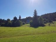 Продается земельный участок в живописном месте. Продается земельный участок в курортном районе Рача-Лечхуми, Грузия. Фото 1