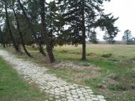 Земельный участок выгодный для инвестиций в Кобулети, Аджария, Грузия. Фото 6