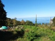 Участок в Махинджаури с видом на море и город Батуми,Грузия. Фото 6