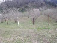 Земельный участок в Гонио, Грузия. Фото 6