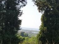 Участок в Ахалсопели, Аджария. Участок с видом на море и город в Ахалсопели, Аджария, Грузия. Фото 3