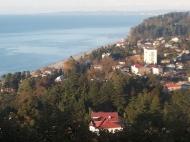 Участок с видом на море в Махинджаури,Грузия. Фото 3