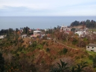 Ground area ( A plot of land ) for sale with a view of the sea of Makhinjauri, Georgia 800 m away from seaside Photo 13