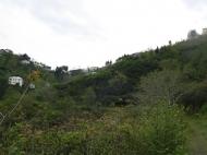 Участок в Батуми. Купить земельный участок в Батуми,Грузия. Фото 2