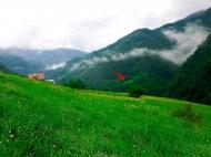 Земельный участок в курортном районе Грузии Фото 13
