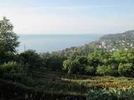 Участок с видом на море в Махинджаури,Грузия. Фото 5