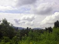 Купить по выгодной цене земельный участок в Грузии. Участок с природным родником у моря в Махинджаури, Грузия. Фото 5