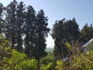 Участок в Ахалсопели, Аджария. Участок с видом на море и город в Ахалсопели, Аджария, Грузия. Фото 11