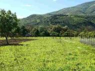 Продается земельный участок в Натахтари, Грузия. Фото 2