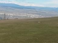 Участок в Тбилиси с видом на горы и город. Купить земельный участок в пригороде Тбилиси, Шиндиси. Фото 4