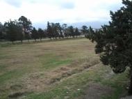 Земельный участок выгодный для инвестиций в Кобулети, Аджария, Грузия. Фото 5