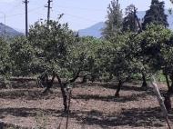 Продается земельный участок в пригороде Батуми, Грузия. Фото 1