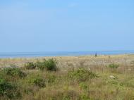 Земельный участок на пляже Черного моря в Кобулети. Участок на пляже Черного моря в Кобулети, Грузия. Фото 4