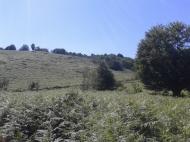 Земельный участок в Ланчхути. Купить земельный участок в Грузии. Фото 3