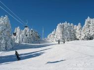 Участок в центре Бакуриани. Купить участок с видом на горы в Бакуриани,Грузия. Фото 1